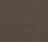 22. R6457 FG Sahara Pfleiderer