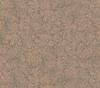 27. R6428 HG Mars Pfleiderer